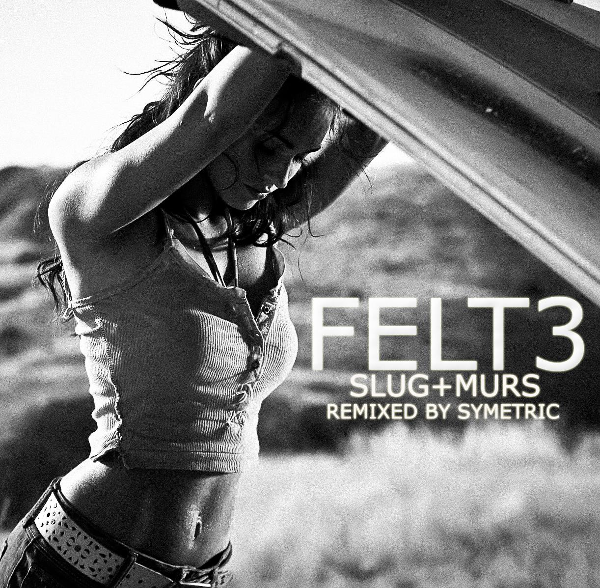 [Album Remix] Slug and Murs - Felt 3 (Remixed by Symetric) MEGAN_copier