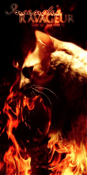 Incendie Ravageur - Laissez moi tranquille. Incendie_Ravageur