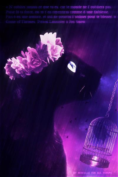 Mystère de la Rose [EN COURS ] LDD_2