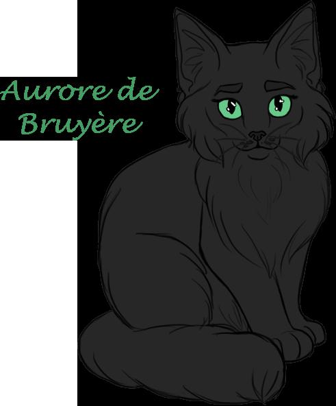 ♛Unknown Cat Battleground♛ - Page 5 Aurore_de_Bruyere_600px