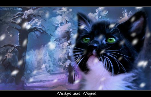 Electra's Light [Fermé] Sign_Nuage_des_Neiges