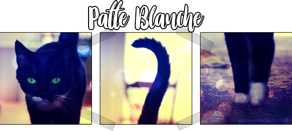 Patte Blanche - Ancienne membre du Clan de l'Eclipse Sign_Patte_Blanche