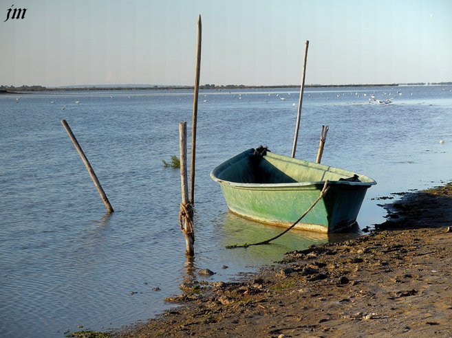 Les Saintes Maries de la Mer dans Mer Camargue