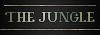 Par simple curiosité  10035JUNG