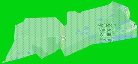 <center>Les forêts bordant Houston <font color=#cc9933>furent plantées ou accrues par l'homme</font> il y a de cela de nombreuses années, dans un projet de grande ampleur et très coûteux dont l'objectif était de réinstaurer de vastes parcelles de nature détruites par le passé, ainsi que de permettre la pérennisation d'espèces régionales menacées par le manque d'espace de vie. Ce projet a été un éminent succès et aujourd'hui ces forêts sont devenues étonnamment <font color=#cc9933>épaisses, denses et fortement habitées.</font> <br /><br /> À tel point qu'il n'est <font color=#cc9933>pas possible d'y engouffrer un véhicule</font> autre qu'un deux roues et pour autant, il est impossible d'y réaliser quelconque accélération, tant les <font color=#cc9933>arbres sont accolés et la végétation touffue.</font> Il en va de même pour la progression à dos d'équidé. <font color=#cc9933>L'orientation en son sein s'avère aussi très complexe</font>, le soleil filtrant difficilement de jour et il est facile de s'y perdre si l'on est pas initié à cet environnement sauvage. On trouve dans ces espaces naturels différentes espèces locales, dont les Pronghorns, les loups rouges et les tatous, mais également des cerfs, lapins, sangliers et autres animaux importés d'autres régions des États-unis. <br /><br /> Plusieurs mois après l'apocalypse déjà, des phénomènes naturels ont été remarqués : <font color=#cc9933>les forêts se sont élargies et épaissies plus encore et la démographie des animaux a explosé.</font> De <font color=#cc9933>nombreux rôdeurs</font> isolés ou en petits groupes s'y trouvent régulièrement et <font color=#cc9933>le passage occasionnel de hordes</font> se constate, bénéficiant de l'encombrement végétal pour surprendre leurs proies, ce qui n'en fait pas des lieux sécuritaires, loin de là.  <br /><br /><font color=#FF0000>Seul le Dé de fouille nommé « DÉ CHASSE » peut être utilisé dans cette zone de Rôleplay.</font>  <br /><br /><a style=text-decoration:none;color:#c93;fo