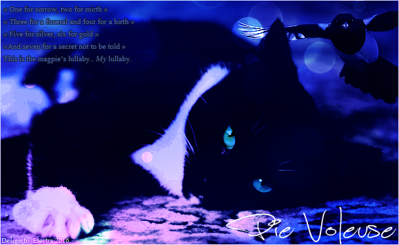 Electra's Light [Fermé] Sign_Pie_Voleuse_2